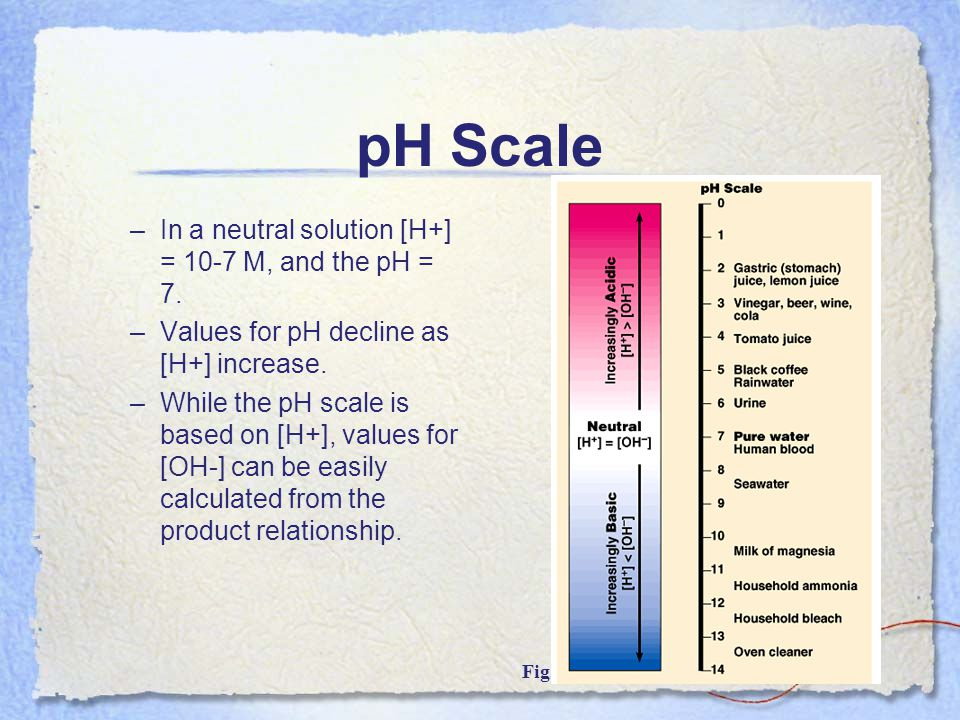 pH Scale In a neutral solution [H+] = 10-7 M, and the pH = 7.